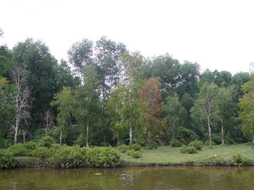Khu du lịch rừng tự nhiên Bằng Tạ