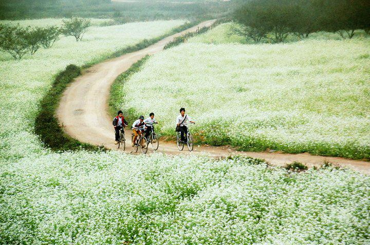 Khu du lịch Thung Nai Hòa Bình