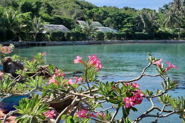 Khách sạn Whale Island Nha Trang Resort
