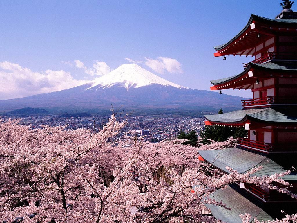 Hà Nội - Osaka - Kyoto – Toyohashi – Hamamatsu – Núi Phú Sĩ - Kawaguchi – Hakone – Tokyo